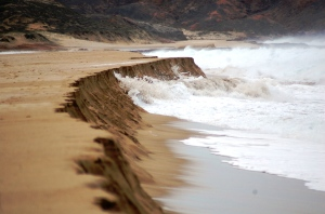 Natural erosion from Tropical Storm IVO, which removed over 60 meters of beach.