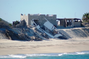 Nesting habitat loss due to unregulated tourism development in coastal dunes